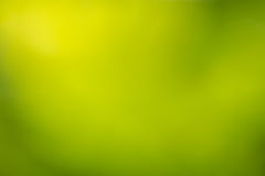 Fondo verde Defocused del extracto de la naturaleza Imagen de archivo libre de regalías