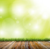 Fondo verde del bokeh Fotografia Stock