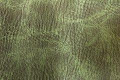 Fondo verde del cuero del poliuretano Imagen de archivo
