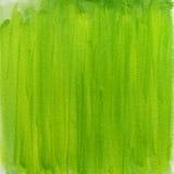 Fondo verde del extracto de la acuarela de la primavera Fotos de archivo