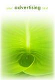 Fondo verde del extracto de la hoja Foto de archivo libre de regalías