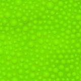 Fondo verde del limo stock de ilustración