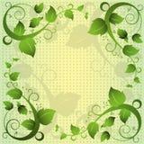 Fondo verde del marco del extracto del remolino de la hoja Fotos de archivo