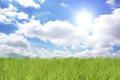 Fondo verde del paisaje Fotos de archivo libres de regalías