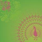 Fondo verde del pavo real Fotos de archivo libres de regalías