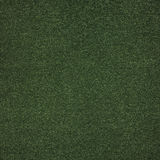 Fondo verde del tappeto erboso di astro Immagine Stock Libera da Diritti