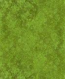 Fondo verde del terciopelo imagen de archivo libre de regalías
