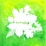 Fondo verde dell'acquerello con le foglie bianche Fotografia Stock Libera da Diritti
