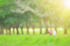 Fondo verde dell'estratto del parco naturale della sfuocatura Fotografie Stock