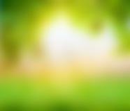 Fondo verde dell'estratto della sfuocatura della natura Fotografia Stock