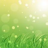 Fondo verde della natura Fotografia Stock