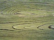 Fondo verde di legno Fotografie Stock Libere da Diritti