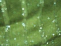 Fondo verde enmascarado Imagenes de archivo