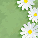 Fondo verde floreale d'annata con il chamom del fiore Immagini Stock
