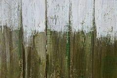 Fondo verde grigio dei bordi asciutti e vecchi della parete Immagine Stock
