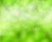 Fondo verde natural Foto de archivo libre de regalías