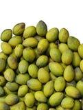 Fondo verde oliva Immagini Stock