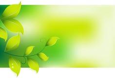 Fondo verde que va ilustración del vector
