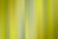 Fondo verde y amarillo del extracto de la luz suave Foto de archivo libre de regalías