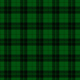 Fondo verde y negro de la tela de la tela escocesa Fotos de archivo libres de regalías