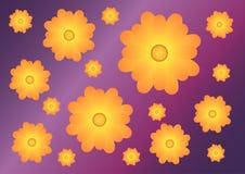 Fondo violeta con el modelo con las flores amarillo-naranja Fotografía de archivo libre de regalías