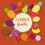 Fondo y lugar de la fruta tropical del verano para el texto ilustración del vector