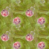 Fondo y rosas verdes Imágenes de archivo libres de regalías