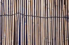 Fondo y textura de bambú de la cerca Imagen de archivo libre de regalías