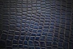 Fondo y textura de la piel Foto de archivo libre de regalías