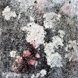 Fondo y textura del grunge del piso Fotos de archivo