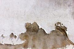 Fondos concretos de la capa del fall Imagen de archivo