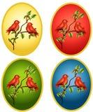 Fondos del óvalo de los cardenales ilustración del vector