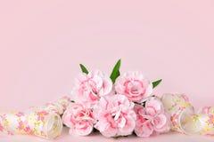 Fondos del día de madres, claveles rosados en el fondo rosado Imagen de archivo