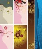 Fondos del diseño floral Imagen de archivo libre de regalías