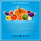 Fondos del vector, banderas sobre la consumición sana Elementos de las verduras del vector para el infographics Verduras Imagenes de archivo