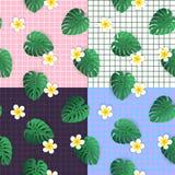 Fondos inconsútiles hermosos del modelo del vector fijados con las flores del plumeria y las hojas tropicales del monstera stock de ilustración