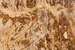 Fondos y texturas de piedra naturales Imagen de archivo