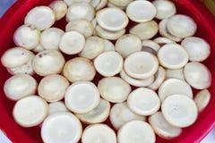 Fonds d'artichauts Image stock