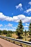 Fonds de tour de rassemblement de liberté du courrier 86 de légion américaine - éleveur en Arizona du nord, Etats-Unis photographie stock