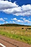 Fonds de tour de rassemblement de liberté du courrier 86 de légion américaine - éleveur en Arizona du nord, Etats-Unis image libre de droits