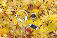 Fones de ouvido brancos com um jogador e um copo do chá e do café em um fundo das folhas amarelas Imagens de Stock