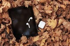 Fones de ouvido/fones de ouvido brancos e almofada preta da tabuleta em um fundo das folhas amarelas fotos de stock