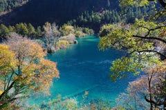 Fonkelend meer in Jiuzhaigou Stock Foto's
