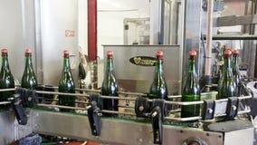 Fonkelende flessen op de transportband in een fabriek stock videobeelden