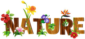 Font design for word nature with different types of flowers Stock Images