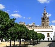 Font du jardinage et la tour, cathédrale de Séville, Espagne Photo libre de droits