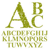 Font made with leaves, floral alphabet letters set, vector desig Stock Photos