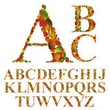 Font made with leaves, floral alphabet letters set stock illustration