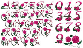 Font and numbers set pink floral Stock Image