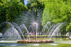 Fontain in Peterhof, Russia Stock Images